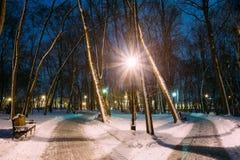 2 путь, путь в парке города Snowy в свете фонариков на вечере Стоковые Изображения