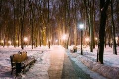 2 путь, путь в парке города Snowy в свете фонариков на вечере Стоковая Фотография