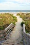 путь пляжа к Стоковые Изображения RF