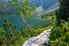 Путь рядом с Morskie Oko стоковое изображение rf