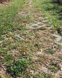 Путь сада в осени Стоковые Фото