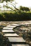 путь сада Стоковое Изображение