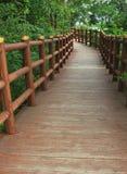 путь сада стоковые фото