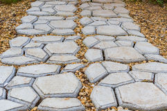Путь сада каменный при трава растя вверх между камнями Стоковое Изображение
