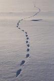 путь снежка Стоковые Изображения RF