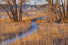 путь снежные 2 хлопоков стоковое изображение