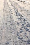 путь снежный Стоковая Фотография