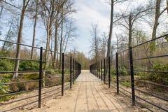 Путь с мостом металла в голландском лесе Стоковое фото RF