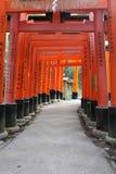 Путь торусов в Fushimi Inari Стоковые Фотографии RF