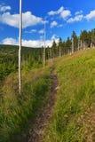 Путь туриста горы Стоковые Фотографии RF