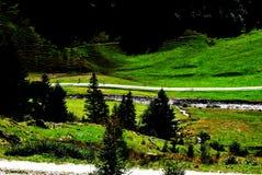 Путь луга Стоковые Изображения