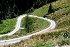 Путь луга Стоковое фото RF