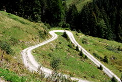 Путь луга Стоковое Изображение