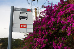 Путь установить Tibidabo Стоковое фото RF