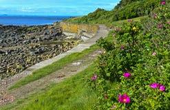 Путь файфа прибрежный около Crail стоковая фотография rf