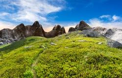 Путь через валуны на горном склоне Стоковое Изображение