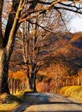 Путь через долину стоковые фото