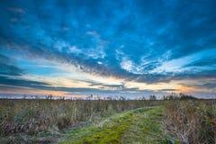 Путь через одичалую сельскую местность Стоковая Фотография