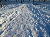 Путь через снег Стоковые Фотографии RF