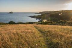 Путь через траву Стоковое Изображение