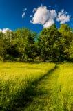 Путь через травянистое поле на поле брани Antietam национальном, Mary Стоковое Фото
