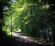 Путь Эдинбурга Стоковые Фотографии RF