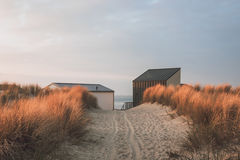 Путь дюны к пляжу стоковое фото