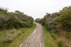 Путь дюны Стоковое Изображение RF