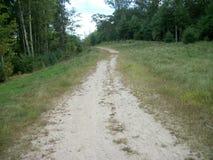 Путь для того чтобы Duck пруд Стоковая Фотография