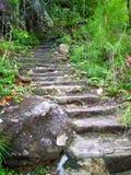 путь 07 природ Стоковое Фото
