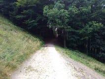 путь Стоковая Фотография RF