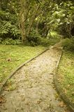 путь Стоковые Изображения RF