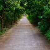 Путь Стоковое фото RF