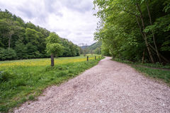 Путь Forrest на Uracher Wasserfälle, плохом Urach, Германии Стоковая Фотография RF