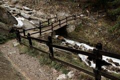 Путь Gran Paradiso Стоковые Фото