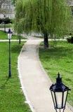 путь prague парка Стоковое Изображение RF