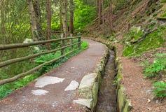 Путь Scena Waalweg стоковое фото rf