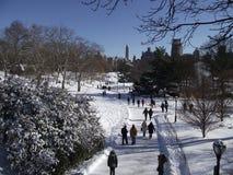Путь Snowy Стоковое Изображение RF