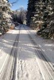 Путь Snowy Стоковая Фотография RF