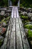 путь yosemite национального парка стоковое изображение