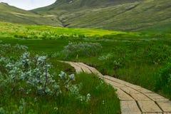 путь yosemite национального парка стоковое фото rf
