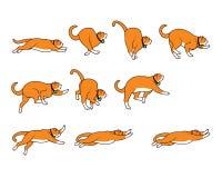 Пухлый кот падая пока скачущ спрайт Стоковое Изображение