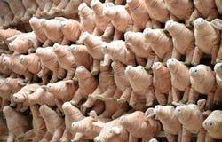 Пушистая смертная казнь через повешение куклы свиньи на стене Стоковое Изображение