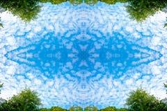Пушистые облака и сочное зеленое небо дерева березы листвы и голубых в тропическом лесе на предпосылке природы рамки текстурируют Стоковые Фотографии RF