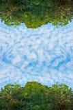 Пушистые облака и сочное зеленое небо дерева листвы и голубых на текстуре предпосылки природы рамки Стоковая Фотография RF