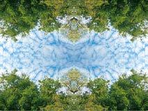 Пушистые облака и сочное зеленое небо дерева листвы и голубых на текстуре предпосылки природы рамки Стоковые Изображения
