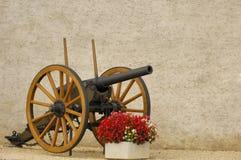 пушка бегоний Стоковая Фотография