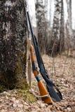 пушки 2 Стоковая Фотография