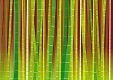 Пуща вектора Bamboo на предпосылке градиента Стоковая Фотография