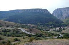 Пуща в горах Стоковая Фотография RF